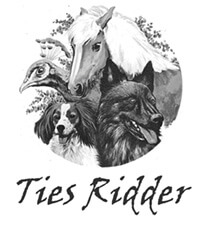 ties ridder logo