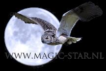 magic star logo